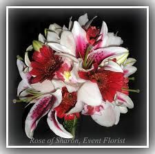 stargazer lily boquets with red - Google Search