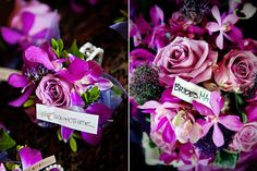 Fuschia & Purple