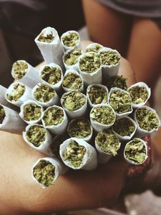 Legal cannabis shop; Visit Our Legit, Reliable And Discreet Online Cannabis Dispensary And Get Your High Grade Medical Marijuana | Weed for Sale | THC and CBD Oil For Sale | Cannabis oils | Edibles For Sale | Hemp Oil | Wax | Shrooms For Sale, Top Grade Strains (Hybrid, Indica and Sativa). Go to..https: // www.legalcannabisshop.com Text or call +1 (908)485-7293