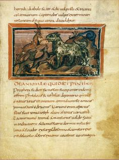 "Bern Physiologus, a Latin manuscript c. 825 CE of the Physiologus, a text from 2nd - 4th century Alexandria, consisting of animals, plants, and fantastic creatures, with descriptions of their symbolic qualities.  For over 1000 years the text influenced Europe's ideas of the ""meaning"" of animals."