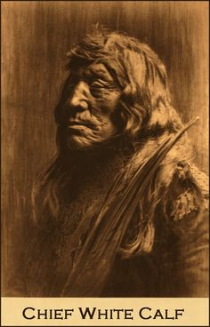 """White """"Buffalo"""" Calf, Piegan Chief, died at Washington in 1903. He was almost 80 yrs old. He was chief of his tribe for about a generation. In 1855, known as """"Feather"""", he signed a treaty negotiated by Gov. Stevens. As a warrior, White Calf was famous among the tribes. With the passing of inter tribal warfare he peacefully worked for the good of his people."""