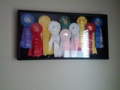 I need to do something like this with all my ribbons! High point game horse ribbon, and 3rd place at Mill Creek Trail Horse trials are the ones I'm proudest about, but I have hundreds of others, too!! Miss my Mama! She was the best at whatever we were competing at!! Got the ribbons to prove it!