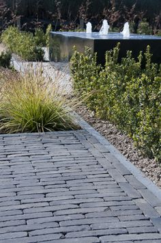 Vande Moortel paving, in Netherlands. Garden Paving, Terrace Garden, Water Garden, Modern Landscaping, Backyard Landscaping, Back Gardens, Outdoor Gardens, Clay Pavers, Water Features In The Garden
