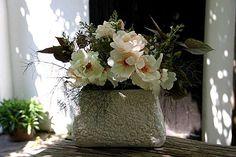 Roses Jacqueline du Pré  Calamintha nepeta  Eupatorium rugosum Chocolate  Fenouil bronze