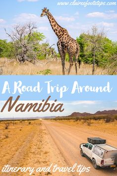 If you're thinking of taking a Namibia road trip while travelling in Africa, look no further for the perfect itinerary and travel tips for Namibia. Complete with some of the best things to do in Namibia as well as places to see African safari animals, this Namibia itinerary has you covered!