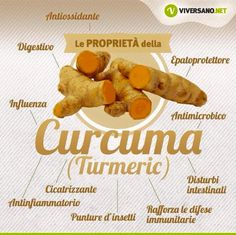 Proprietà Curcuma Health And Wellness, Health Fitness, Wellness Fitness, Healthy Tips, Healthy Recipes, In Natura, Health Remedies, Natural Health, Real Food Recipes