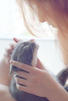 Badinage ...tendresse et caresses. .hummmm chat z'aime bien!! Et laissez nous tranquille. ..Allez donc déjeuner c'est l'heure. .