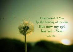 In the New Testament sense, seeing God equals gaining God. To gain God is to receive God in His element, in His life, and in His nature that we may be constituted with God. All God's redeemed, regenerated, sanctified, transformed, conformed, and glorified people will see God's face (Revelation 22:4) (WL)