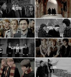 golden trio - harry potter