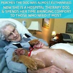 Oh, the stupidity of man. The hospitalised people have gained so much. Thank heaven Peaches was saved.