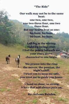"""The Ride"" a poem by Autumn Baisden. For that special horse and all the shows we've shared. Rodeo Quotes, Equine Quotes, Cowboy Quotes, Equestrian Quotes, Horse Poems, Horse Riding Quotes, Horse Sayings, Cute Horses, Horse Love"