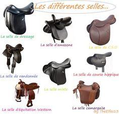 Horses & ponies: L & n harnachement Horses & Ponies: L'harnachement - Art Of Equitation Equestrian Outfits, Equestrian Style, Equestrian Fashion, Types Of Horses, English Riding, Horse Tips, Horse Care, Horseback Riding, Horse Riding