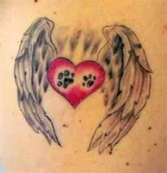 Cute Heart With Angel Wings Made To Express Love For A Pet Close