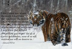"""""""I don't know how to save the world. I don't have the answers or The Answer. I hold no secret knowledge as to how to fix the mistakes of generations past and present. I only know that without compassion and respect for all of Earth's inhabitants, none of us will survive—nor will we deserve to #nature #animals #tigers #compassion #earth #conservation #planet"""
