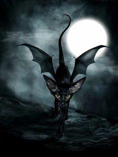 20+ Toon Hertz ideas   goth art, gothic art, dark art