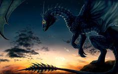Dragon Wallpaper - dragons Wallpaper