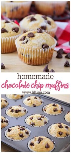 Soft and airy muffins studded with milk chocolate chips make for a great breakfast, treat, or snack. The kids especially love to help make (and eat!) these easy homemade chocolate chip muffins! Delicious Bakery-Style Chocolate Chip Muffins - so delicious! Chocolate Chip Cookies, Homemade Chocolate Chip Muffins, Homemade Muffins, Choclate Chip Muffins Recipe, Chocolate Chocolate, Chocolate Muffin Recipe Easy, Recipes With Chocolate Chips, Easy Homemade Snacks, Chocolate Snacks