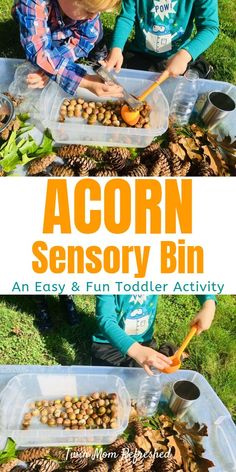A fun fall or autumn sensory bin for toddlers and preschoolers. This sensory play toddler activity is quick and easy to set up and will have your toddler practicing fine motor skills measuring math skills scooping skills and more! Fall Sensory Bin, Toddler Sensory Bins, Sensory Play, Sensory Table, Outdoor Activities For Toddlers, Fall Preschool Activities, Autumn Activities For Babies, Children Activities, Class Activities
