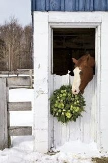 love, haha eating the wreath. My bluebirds were stealing flowers out of my wreath in the springtime, so funny,