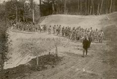 BU-F-01073-1-08751 Coloană de prizonieri austrieci. Muşuroaiele, 1917.08.27 (niv.Document) Wwi, First World, Troops, World War, Outdoor, Outdoors, Outdoor Games, Outdoor Living