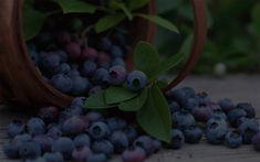 Fruit, Plants, Plant, Planets