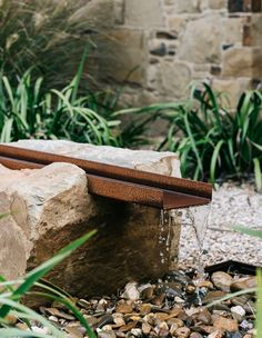 Australian Garden Design, Australian Native Garden, Contemporary Garden Design, Contemporary Water Feature, Modern Landscaping, Landscaping Plants, Landscaping Design, Bush Garden, Minimalist Garden