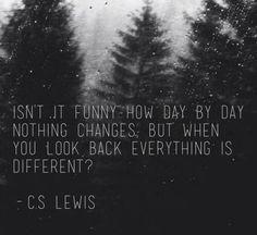 I adore you, Mr. C.S. Lewis!