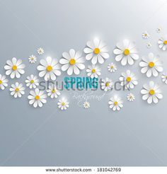 Flowers Daisies Stock Photos, Images, & Pictures | Shutterstock