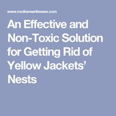 An Effective and Non-Toxic Solution for Getting Rid of Yellow Jackets' Ground Nests — The Green Spotlight Wasp Killer, Natural Insecticide, Too Close For Comfort, Yellow Jackets, Anti Mosquito, Mother Earth News, Garden Pests, Nests, Gardening Tips