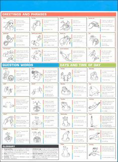 American Sign Language SparkChart Back Sign Language Basics, Sign Language For Kids, Sign Language Phrases, Sign Language Interpreter, British Sign Language, Learn Sign Language, Language Lessons, Grammar Lessons, Writing Lessons
