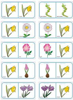 Planche  des Dominos sur les fleurs de printemps et d'été