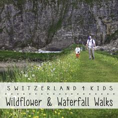 Our favorite waterfall and wildflower walks in Switzerland, great for spring we wait for the snow to melt on the mountain trails. Swiss Miss, Mountain Trails, Travel Essentials, Waterfalls, Walks, Wild Flowers, Places To See, Kids, Wanderlust