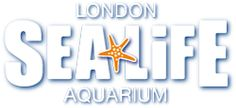 SEA LIFE London Aquarium - Official Website