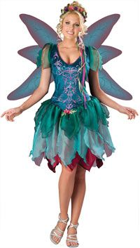 Enchanted Fairy Costume - Fairy Costumes