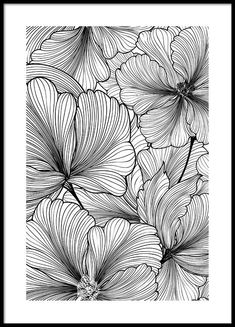 Here you will find floral prints and posters. Stylish posters with botanical prints of colorful plants. Buy botanical posters online from Desenio. Groups Poster, Poster Sizes, Motif Floral, Floral Patterns, Line Patterns, Textile Patterns, Black And White Posters, Floral Drawing, Modern Art Prints