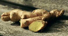 Proven Health Benefits of Ginger Root and Ginger Tea (Including Ginger Lemon Tea Recipe) Eating Raw Ginger, Ginger Lemon Tea, Fresh Ginger, Grow Ginger, Ginger Shot, Ginger Plant, Pickled Ginger, Ginger Juice, Avocado