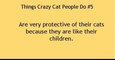 Things Crazy Cat People Do - Tap the link now to see all of our cool cat collections!