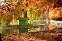 #Serbia Novi Sad, Dunavski Park #travel #photography