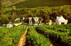 The Top 20 Wineries of the Western Cape, South Africa Cape Dutch, Places Of Interest, Cape Town, Wine Tasting, Homesteading, South Africa, Westerns, Vineyard, Garden Walls