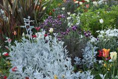 Gazebo, Exterior, Flowers, Plants, Gardening, House, Backyard Farming, Kiosk, Home