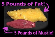 Which would you rather have? Start on the Ultimate Challenge and lose 20 - 30 pounds in 8 weeks! http://yourdietanswer.com