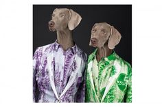 WILLIAM WEGMAN FOR ACNE