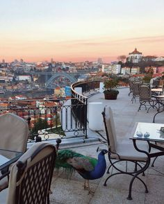 top of the yeatman, porto,  @lilithmoonlife.