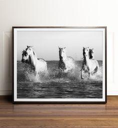 Horse art Black and white photography PRINTABLE art Horse