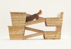 Dog Ramp Over Stairs | Fit for a Boston Terrier, Sou Fujimoto replicated the scaffolding-like ...