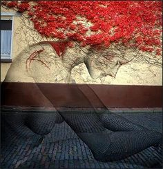 27 Pieces Of Street Art That Interact With Nature: JANA and JS Oak Oak Unknown Unknown Pao Pao Unknown Aakash Nihalani Unknown Ernest Zacharevic Nuxuno Xän Unknown Unknown Natalia Rak Banksy Banksy Oak Oak Urban Street Art, Best Street Art, Amazing Street Art, 3d Street Art, Street Art Graffiti, Street Artists, Urban Art, Amazing Art, Awesome Box