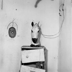 Horse Head on Drawers, 1998 © Roger Ballen