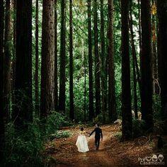 Fotos na floresta. Se tiver a oportunidade FAÇA / Forest wedding photo #precasamento #sitedecasamento #bride #groom #wedding #instawedding #engaged #love #casamento #noiva #noivo #noivos #luademel #noivado #casamentotop #vestidodenoiva #penteadodenoiva #madrinhadecasamento #pedidodecasamento #chadelingerie #chadecozinha #aneldenoivado #bridestyle #eudissesim #festadecasamento #voucasar #padrinhos #bridezilla #casamento2016 #casamento2017