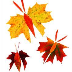 Leaf art:)