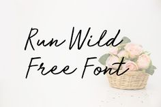 DLOLLEYS HELP: Run Wild Free Font